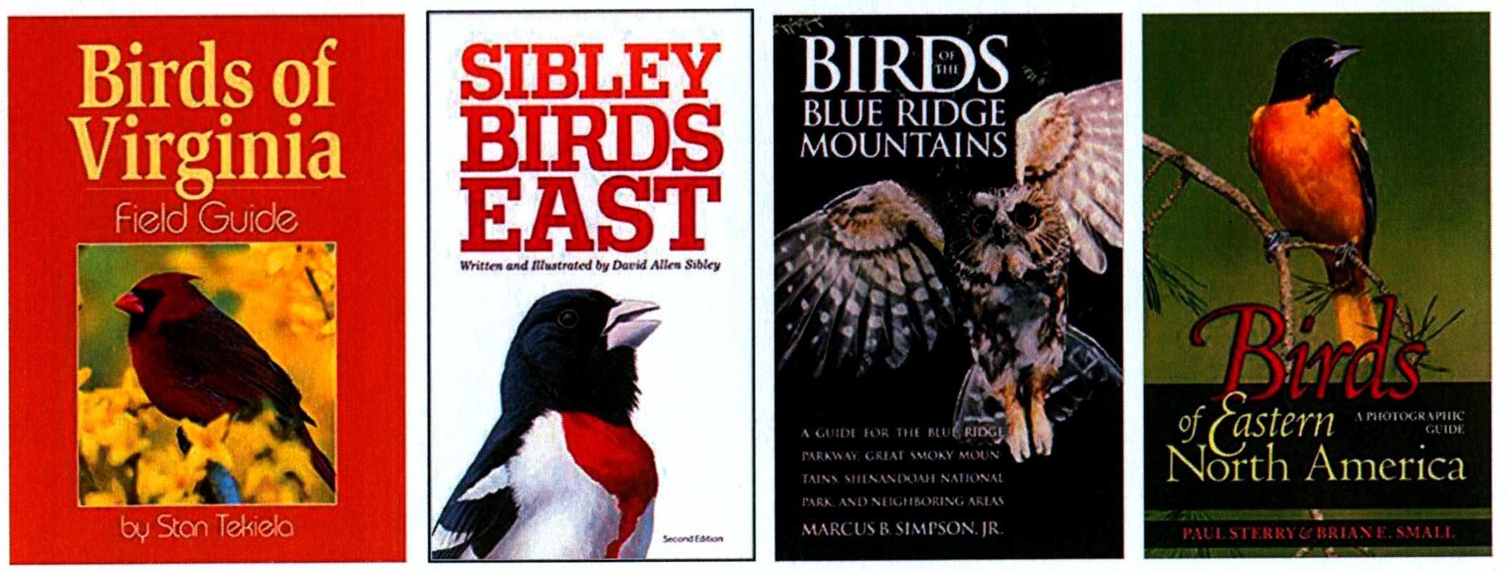 Great Backyard Bird Count   Handley Regional Library System