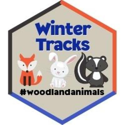 Winter Tracks Badge