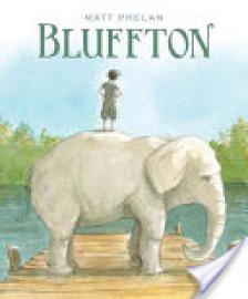 Cover image for Bluffton