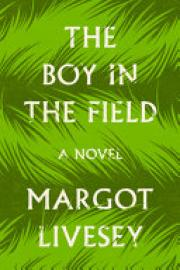 Cover image for The Boy in the Field