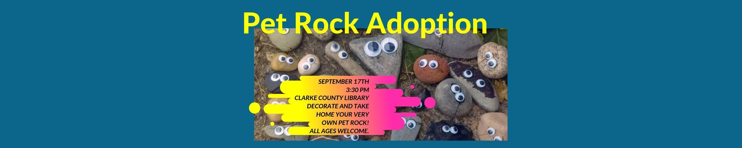 Pet Rock Adoption